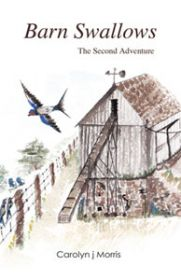 Barn Swallows: The Second Adventure